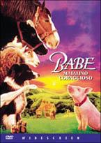 copertina di Babe maialino coraggioso